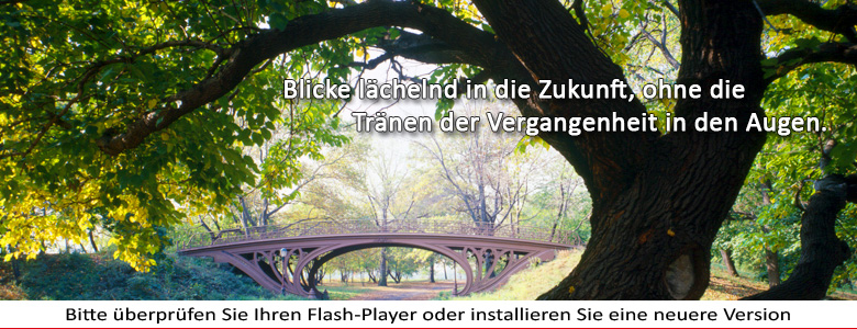 Adobe Flash Player herunterladen